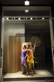Roberto Cavalli v Spiga